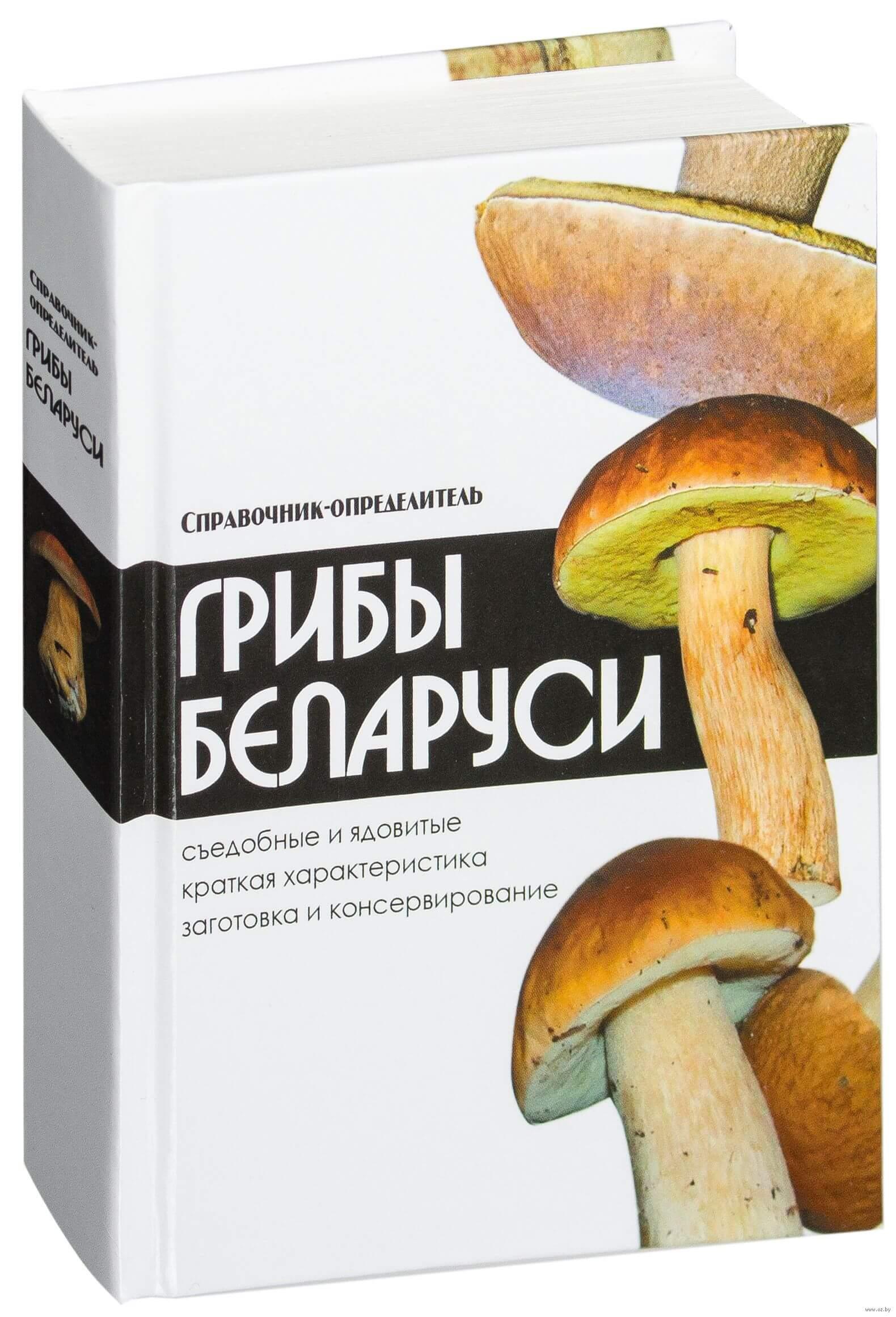 Грибы Беларуси – справочник грибов